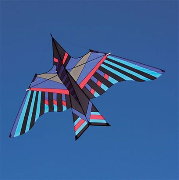 Into The Wind - George Peters' Cloud Bird Kahuna Einleiner-Drachen  (1-Leiner), KITE ONLY - 294 cm x 170 cm, blau/bunt