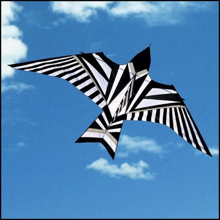 Into The Wind - George Peters* Sky Bird Black & White Einleiner-Drachen (1-Leiner), 480 cm  x 240 cm, schwarz/weiß