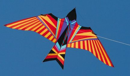 Into The Wind - George Peters* Sky Bird Aloha Einleiner-Drachen (1-Leiner), KITE ONLY - 480 cm x 240 cm, lila/rot/orange