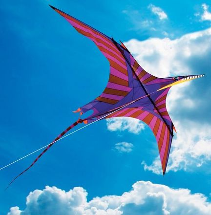 Into The Wind - George Peters* Pterosaur Einleiner-Drachen (1-Leiner), 460 cm  x 240 cm, lila/bunt