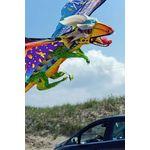 WindNSun  3D-Einleiner-Drachen/Kinderdrachen (1-Leiner) rtf