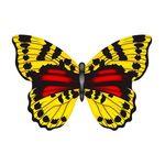X-Kites Mini Mylar Kites - Einleiner-Drachen/Kinderdrachen (1-Leiner)