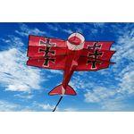 WindNSun - 3D-Einleiner-Drachen/Kinderdrachen (1-Leiner)